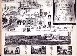 Planche Photos DEBUT 1900 ,Chateau  La Tour Blanche ,Sauternes  Proprietaire Daniel Osiris - France