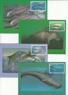 Thailand 1998 4x Maximum Cards - Thailand