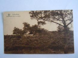 Calmpthout Kalmthout Ongestoorde Rust In De Duinen Nels Gelopen 1934 - Kalmthout