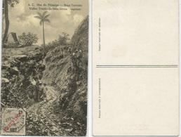 Railway Line In Prince Island Sao Tomé Principe B/w Pcard 2feb 1922 With 2c5 Stamp - Sao Tome Et Principe