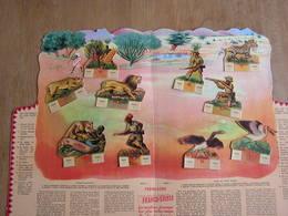 FRANCO SUISSE Tableau N° 3 CHASSE AUX FAUVES Congo Afrique Avec Ses 10 Découpis RARE Tafereel Fromagerie Franco-Suisse - Vieux Papiers