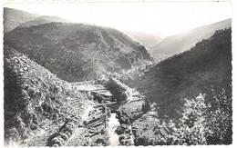 Cpsm Gorniès - Le Pont Neuf Et La Vallée De La Vis - France