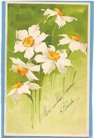C. KLEIN - Fleurs Blanches - Meissner & Buch - Klein, Catharina