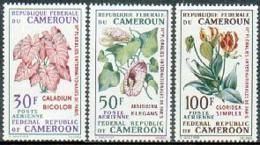 Cameroun, 1969, Flower Exhibition, Flora MNH, Michel 569-571 - Camerun (1960-...)
