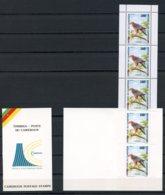 Cameroun, 1992, Birds Of Prey, Hawk, Animals, Fauna, MNH Booklet, Michel 1196 - Cameroun (1960-...)