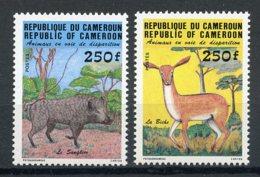 Cameroun, 1984, Wild Boar, Ducker, Endangered Animals, Fauna, MNH, Michel 1048-1049 - Kameroen (1960-...)