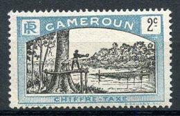 Cameroun, 1925, Lumberjack, Postage Due, 2 C., MH, Michel 1 - Unclassified
