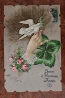 CARTE FANTAISIE - COLOMBE - CARTE EN CELLULOID - BONNE ANNEE - Fancy Cards