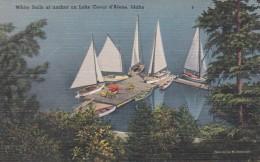 Idaho Coeur D'Alene White Sails At Anchor - Coeur D'Alene