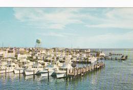 Maryland Ocean City Deep Sea Sport Fishing Fleet
