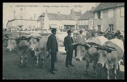 FRANCE - CHATEAU-CHINON -FOIRES - Atellages De Boeufs  Nivernais. ( Ed. N.D. Nº  29) Carte Postale - Foires