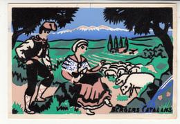 66 - Bergers Catalans - Carte Velours Molinier Perpignan - Francia