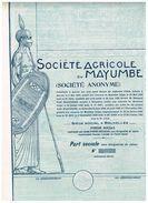 Action Uncirculed - Société Agricole Du Mayumbe - VF - Titre De 1927 - Afrika