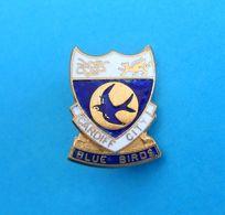 CARDIFF CITY FC - Wales Football Soccer Club Enamel Pin Badge * Fussball Futbol Calcio Foot Futebol * British - Football