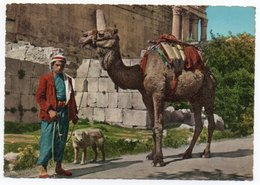 LIBAN/LEBANON - BAALBECK-CHAMELIERS / CAMEL DRIVERS / THEMATIC STAMP-FLOWER - Libano