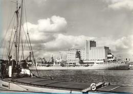 Poland. Gdynia. The Harbour. - Comercio