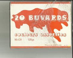 Pochette  De 20  BUVARD  Neufs DE COULEURS ASSORTIES  16 X 21...Voir Scan Production  Chatelles - Papel Secante