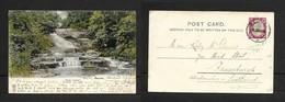 S.Africa Natal Scenery (waterfalls) Used 1d, DENVER 20 1904 ( Transvaal) > Scotland JUN - Afrique Du Sud
