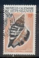 New Caledonia 1970 Shells 10f FU - New Caledonia