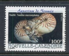 New Caledonia 2000 Noumea Aquarium Nautilus Shells FU - New Caledonia
