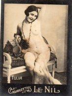 TABAC 6 : Cigarettes Le Nil : Tulia Seins Nues ( Nue Nu ) - Tabac (objets Liés)