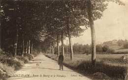 PONT D'AIN  Route De Bourg Et Le Necuday Personnage Chien  RV - France