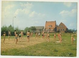AK  Camping De Tolbrug Bergharen 1983 - Pays-Bas