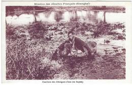 Misssion Des Jésuites Français à Shanghai - Cueillette Des Chataignes En Baquet - Religion - Chine