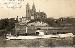 CPA - MAGDEBURG (Allemagne-Saxe-Anhalt) - Das Dom Und Den Dampfschiff Auf Der Elbe In 1910 / 20 - Magdeburg