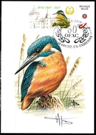 927.BUZIN  LE MARTIN PÊCHEUR - 1985-.. Oiseaux (Buzin)