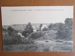 Rabat . Les Tombeaux Des Sultans Negres Dans Le Val De Chellah - Rabat