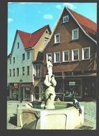 Backnang - Backnanger Bürgerin Und Ihre Gänse - Backnang
