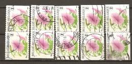 Belgique 2007 - Fleurs, Pétunia - Série Complète De Carnet - Petit Lot De 10 ° - 4 Timbres Différents - Belgique
