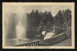 Torino. *Fontana Al Valentino* Ed. S. Caravagno Nº 12404. Nueva. - Lugares Y Plazas