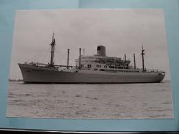 BAUDOUINVILLE Arrived At The Port Of ANTWERP - Built 1957 ( Foto Van GINDEREN Collection : Voir / Zie Foto's ) ! - Schiffe