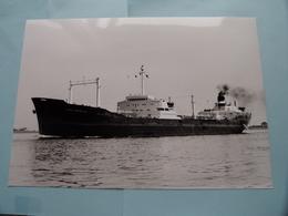 FINA AMERICA Arrived At The Port Of ANTWERP - Built 1958 ( Foto Van GINDEREN Collection : Voir / Zie Foto's ) ! - Bateaux