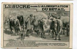 Cpa  PUB : Le Sucre Pour Le Bétail : Illustrateur  NEVIL    VOIR   DESCRIPTIF  §§§ - Publicité