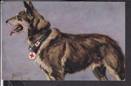 """Rotes Kreuz , Der Sanitätshund Im Felde """" 1.Deutscher Schäferhund """"  1916 - Rotes Kreuz"""