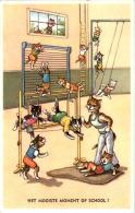 Katzen - Turnen - Gatti