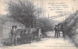 AGRICULTURE - ATELLAGES - 15 - CANTAL PITTORESQUE : Attelage De Boeufs Chargé De Fagots De Bois - CPA - Cantal - Attelages