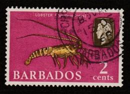 Barbados 1965 Marine Life 2 C Multicoloured SW 237 O Used - Barbados (1966-...)