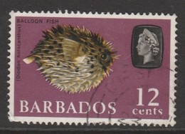 Barbados 1965 Marine Life 12 C Multicoloured SW 243 O Used - Barbados (1966-...)
