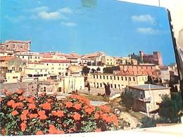 MONTALTO DI CASTRO SCORCIO  VB1984  GW5067 - Viterbo