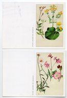 Lot 2 Petits Calendrier - 2002- Fleurs . - Calendriers