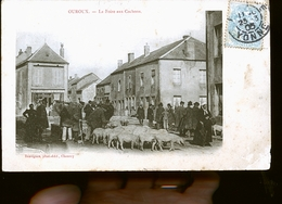 OUROUX FOIRE COCHONS                       JLM - Autres Communes