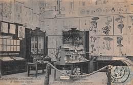 Amiens (80) - Exposition Internationale D'Amiens 1906 - Palais De L'Enseignement - L'Ecole De Médecine Et De Pharmacie - Amiens