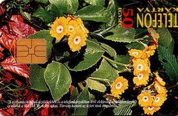 TARJETA TELEFONICA DE HUNGRIA. PROTECTED FLOWERS. Cifra Kankalin (Primula Auricula). HU-P-1996-06. (186) - Flores