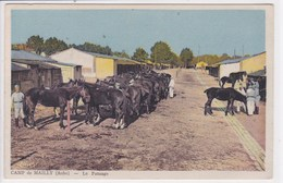 10 MAILLY Le CAMP Le Pansage Chevaux Au Soin - Mailly-le-Camp
