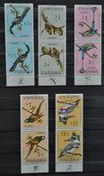 PANAMA 1967 Série 5x2 Timbres Tête-bêche Oiseaux Neufs ** BDF - MNH Birds Confronting Pairs Stamps - Panama