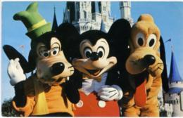WALT DISNEY WORLD  Goofy Michey Mouse And Pluto - Disneyworld